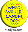 What Would Mahatma Gandhi Do? Pacifist  Liberal Democratic Political Button (Badge, Pin)